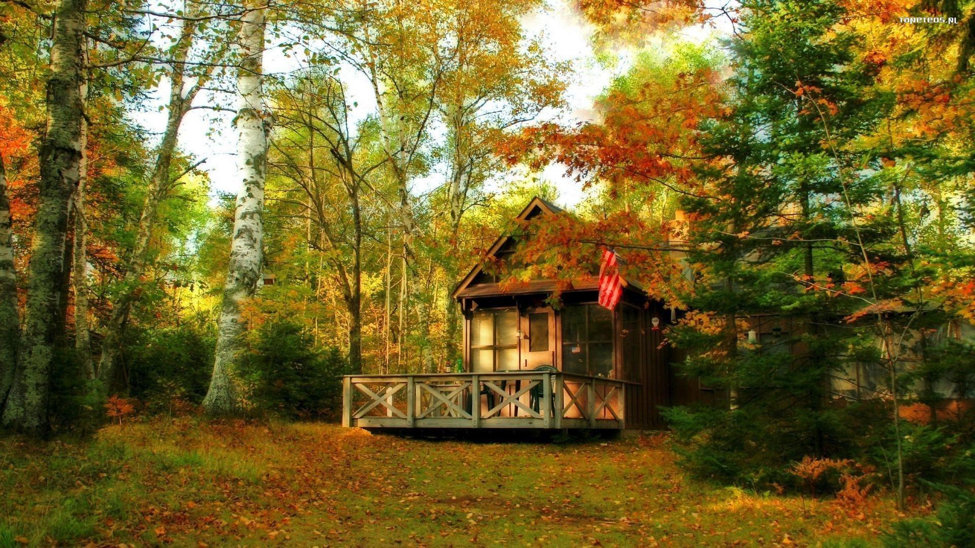 Jesien 1920x1080 016 Dom Drzewa Tapety Na Pulpit